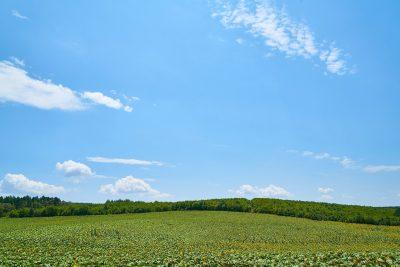 蓝天天空下的田园风景