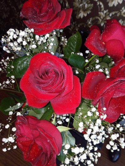 玫瑰、红色
