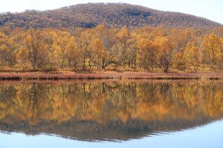 秋季、湖、山