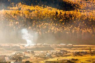 秋天的树林与村庄风景