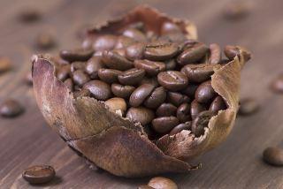 咖啡、咖啡豆、烤