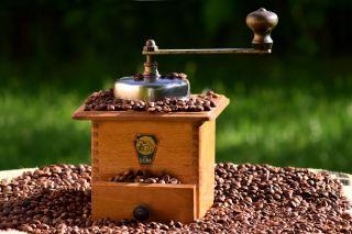 咖啡、咖啡研磨机、磨