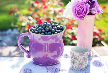 杯子里的蓝莓与花束静物