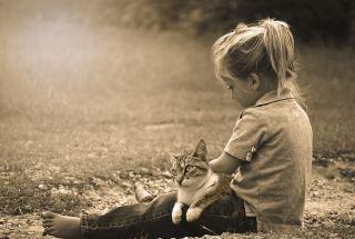 儿童、播放、快乐