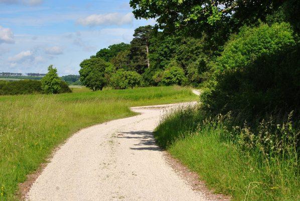 乡间的道路