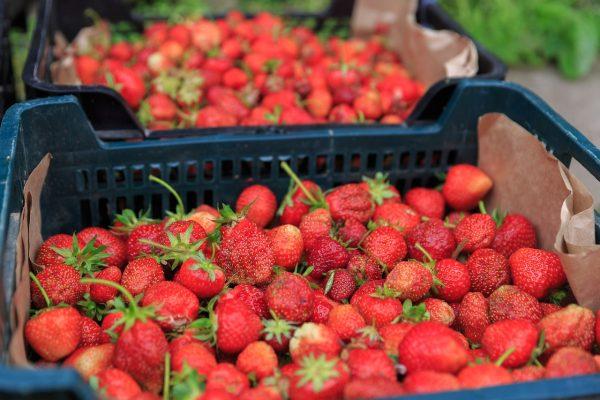 草莓、食品、新鲜