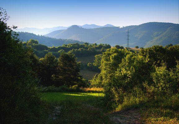清晨的阳光与山间绿色植被风景