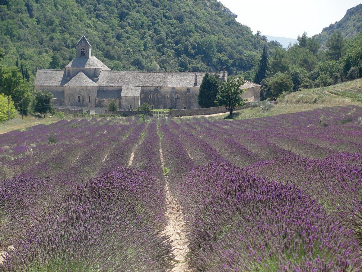 法国的庄园建筑与薰衣草