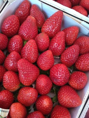 草莓、水果、红色