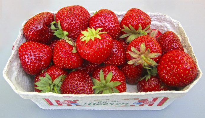 草莓、壳、浆果