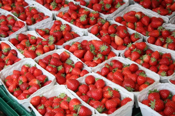 草莓、夏季、水果