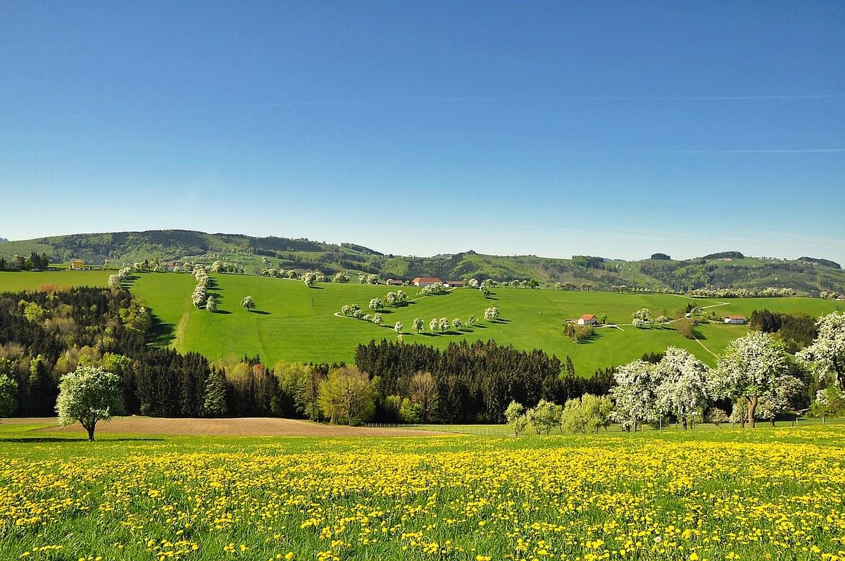 春天的田园自然风景
