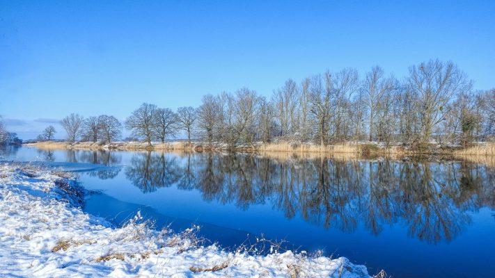 冬天平静的湖泊与湖岸的树