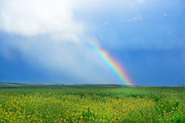 田园的彩虹风景图片