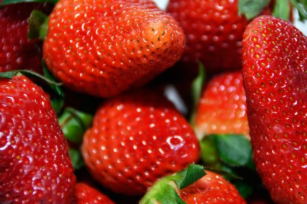 红色、草莓、新鲜
