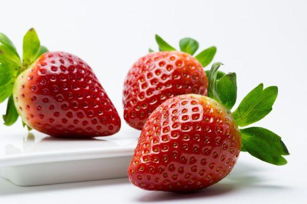 Fresón、草莓、水果