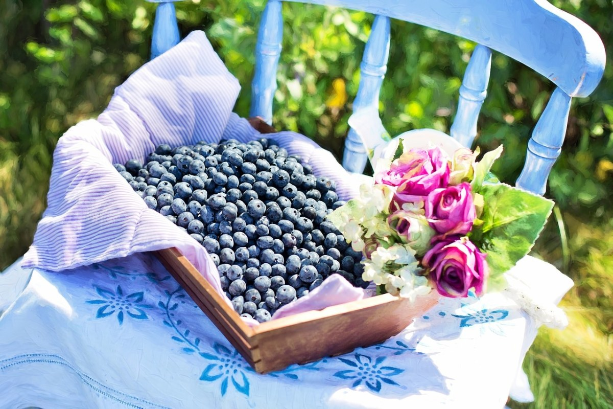 花束与新鲜的蓝莓