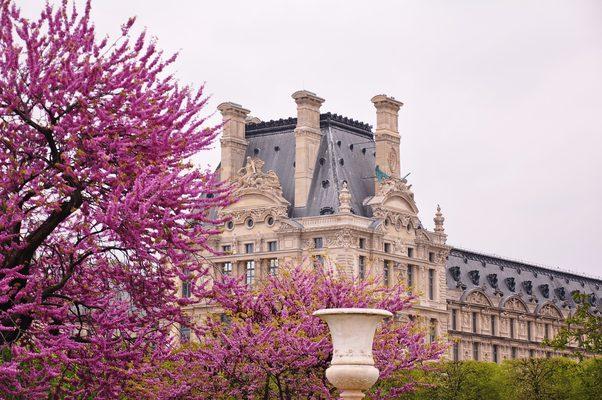 春天的法国巴黎卢浮宫(罗浮宫)建筑