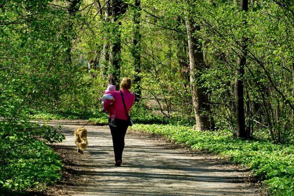 抱着小孩走在林荫道上的女人背影