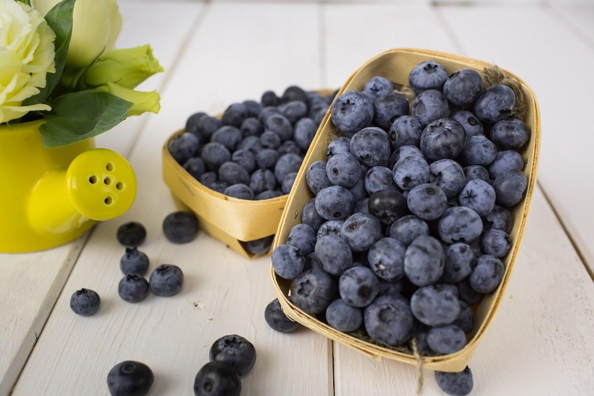 新鲜的蓝莓水果