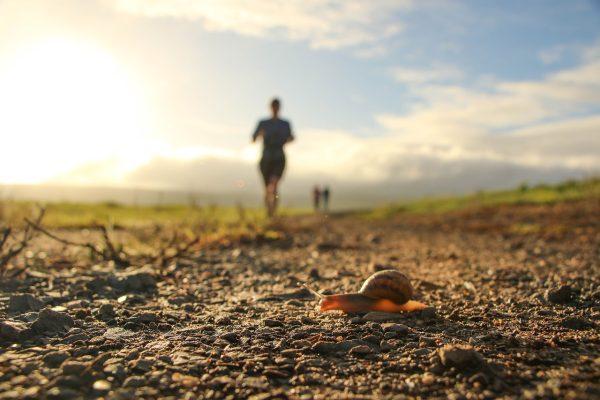 清晨跑步的人与爬行的蜗牛