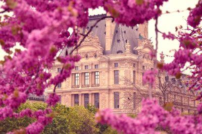 欧式建筑与紫红色的花