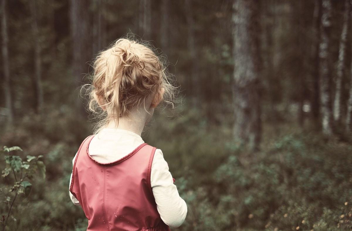 女孩、儿童、森林