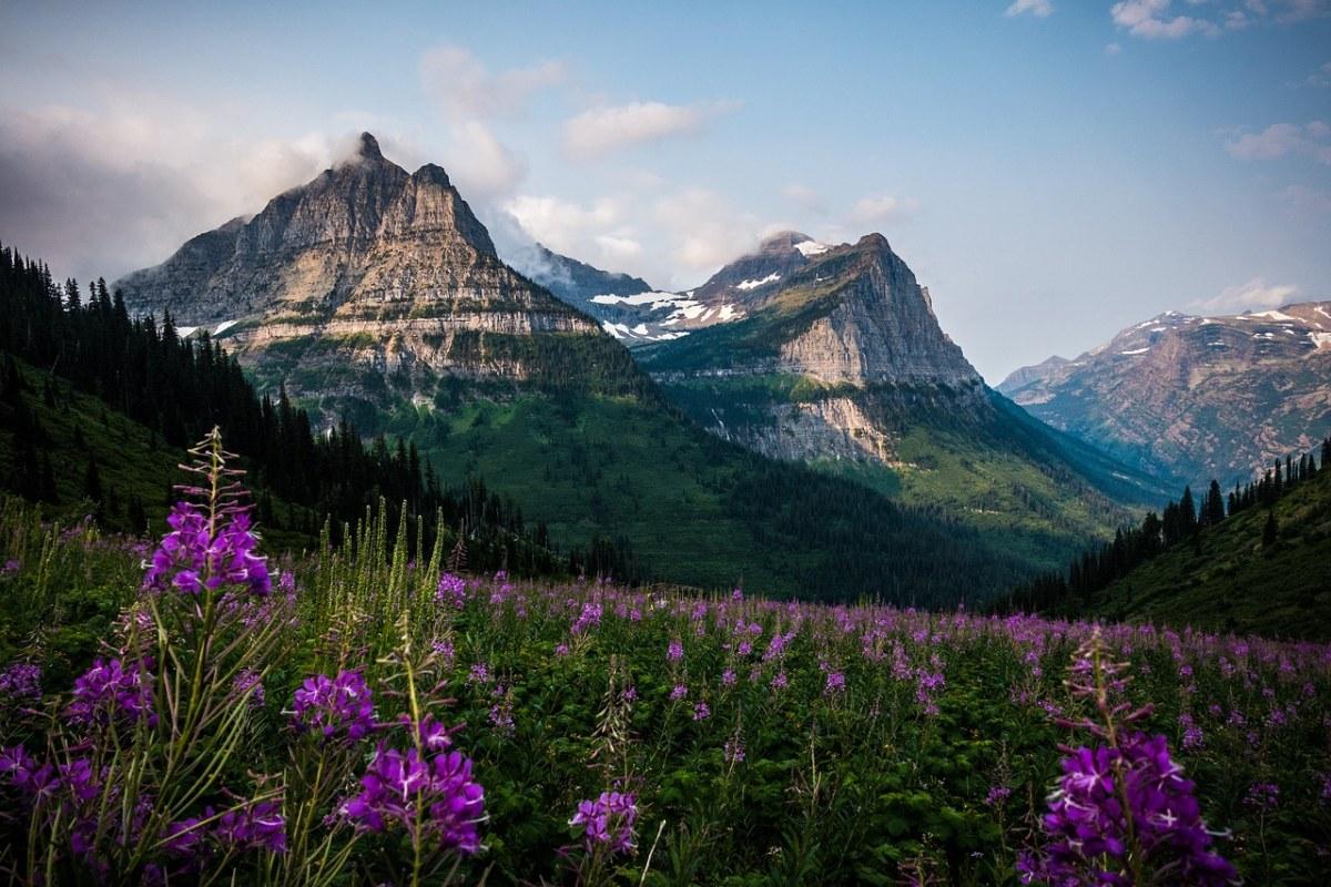 景观、景区、自然